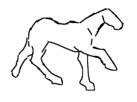 Right lead canter