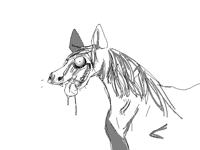 @Terri_The_Dog actual scary horse
