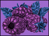 The exotic foods of purple island