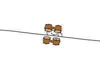 Bongo cat dual wielding his bongos