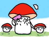 Mo Mushrooms