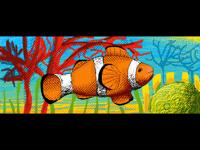~︎ Clownfish ︎~