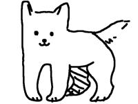 This dog twerking(well it looks like)