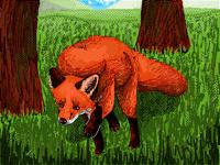 #Foxforcontest
