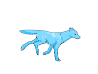Wolf x5 run cycle