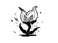 CAT PLANT( slow version)