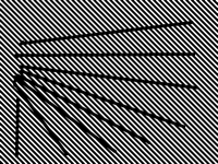 ZebraTest