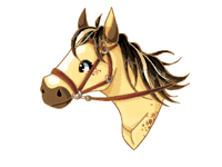 Does anyone have any horse ocs?