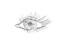 .•Eye•.