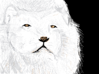 bruh lion