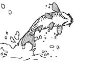 Pez saltando_ Jumping fish