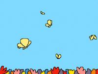 butterflies _ mariposas