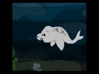 Seal Loop :3