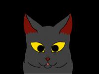 Cat Miaw…