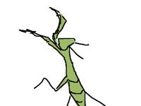 mantis mak happy