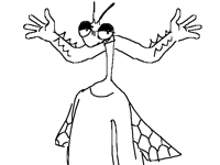 Anthro mantis fly