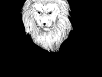 You are a lion