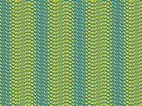 LINEZ illusion