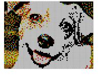 My dog pixel art wip