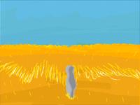 Windy wheat field