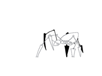 Spider walk cycle