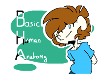 How to: basic human anatomy