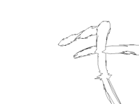 A random animation that im Not going to finish
