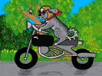 The cool dog and his ride
