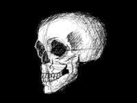 Skull shaded