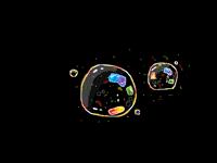Bubbles 2 (done)