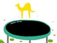 INCREDIBLE CAMEL TRICK