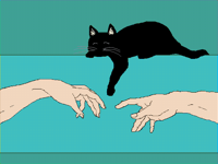 Creation of a Cat