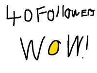 40 followers