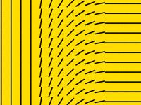 Flip wave #1