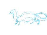 Dragon sketch(wip)