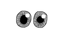New Eye Style
