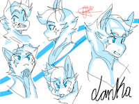 Lanka face expressions
