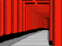 1000 Torii Gates