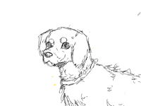 I can't really draw other types of dogs