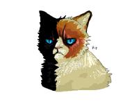 late but rip grumpy cat