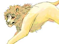 big hairy cat