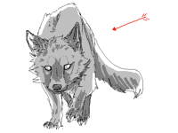 wolf/fox thingy