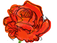 Thanks @Dlucas for roses [animated]