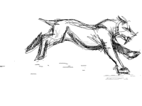 Saber tooth [cycle practice]
