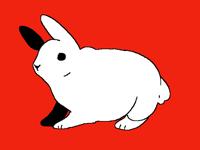 Bunny hop loop!!