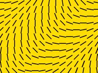 Flip wave #3 (the last wave)