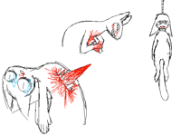 Practicing: gore and blood