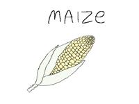 Ma(I)ze