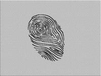 Fingerprint's scanner