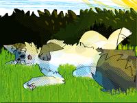 Lazy bab